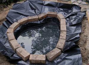membuat kolam ikan sederhana