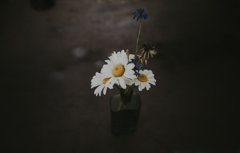 Cara Membuat Pot Bunga Sederhana