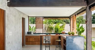 dapur dan taman belakang rumah minimalis