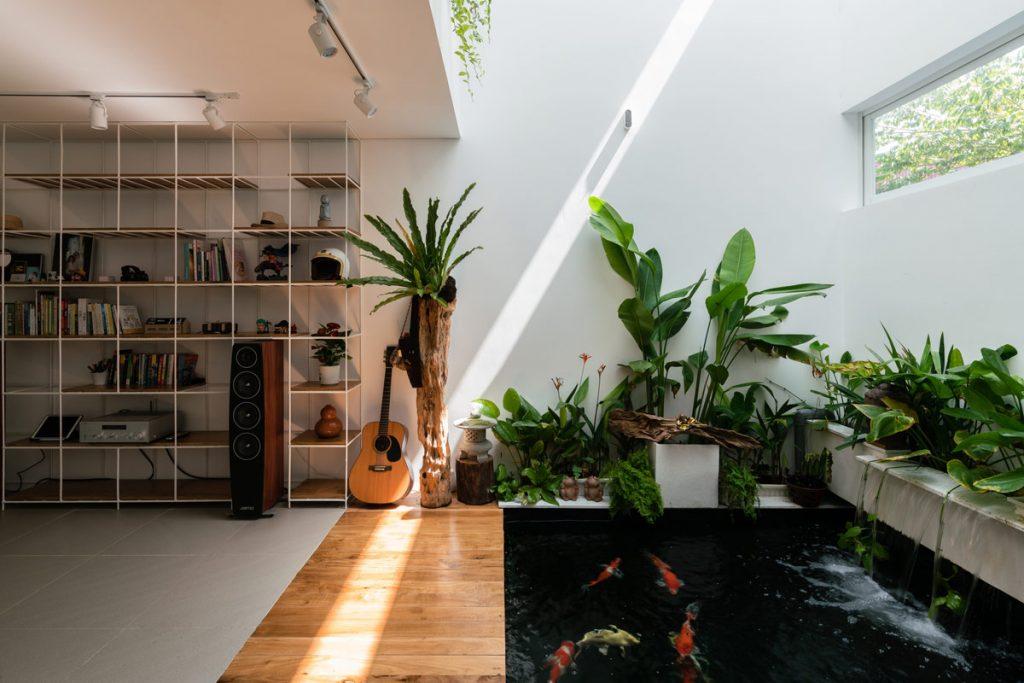 desain kolam ikan belakang rumah