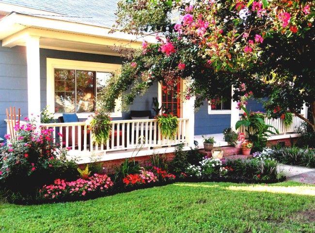tanaman hias depan rumah mawar